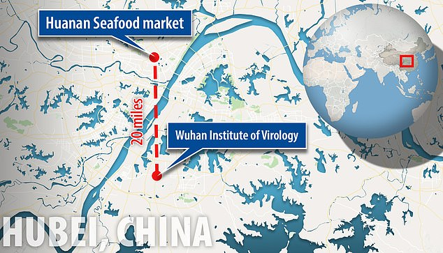The Wuhan National Biosafety Laboratoryis located about 20 miles away from the Huanan Seafood Market
