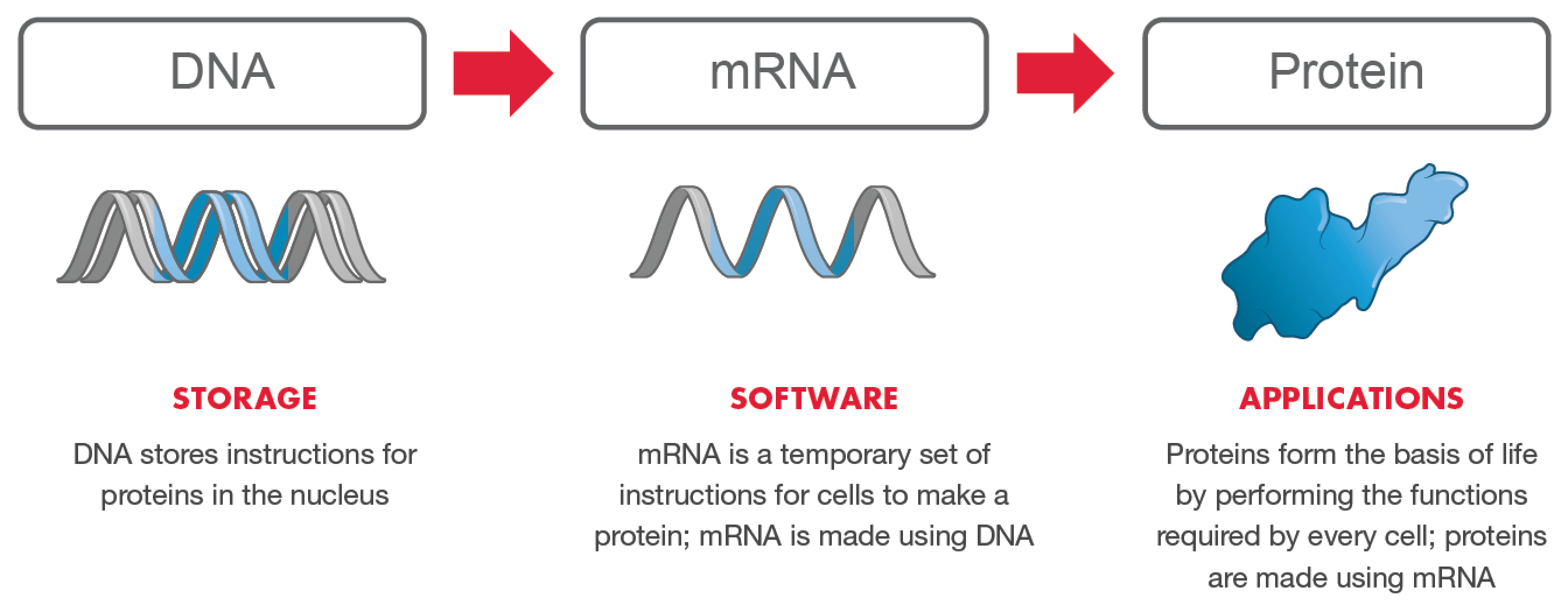Experimental COVID-19 mRNA Vaccines Are Operating System Designed To Program Human DNA